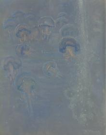"The Medusae (from the Collection entitled ""Inhabitants of the Sea"")"